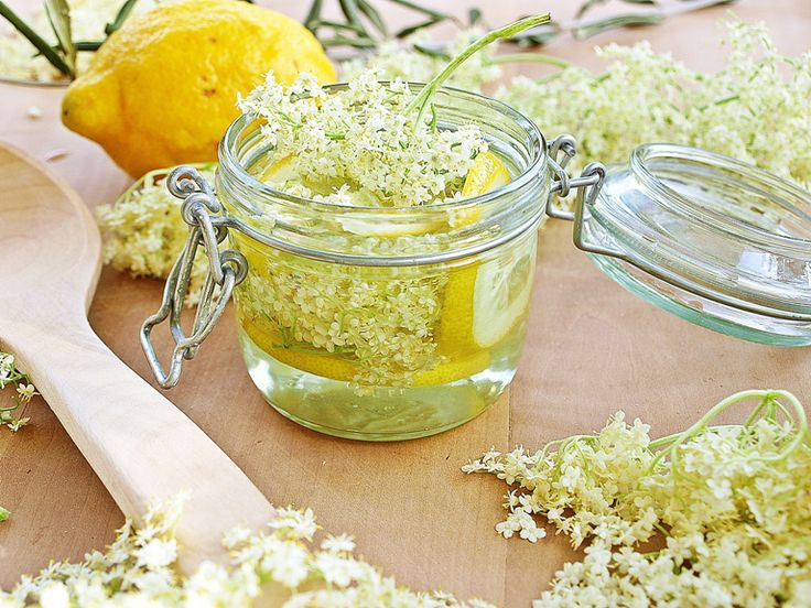 Elderflower cordial is perfect for summer cocktails and garden parties