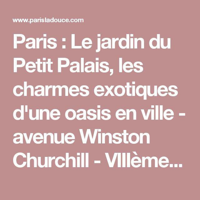Paris : Le jardin du Petit Palais, les charmes exotiques d'une oasis en ville - avenue Winston Churchill - VIIIème         | Paris la douce