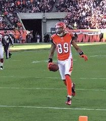 Amazing jumping touchdown