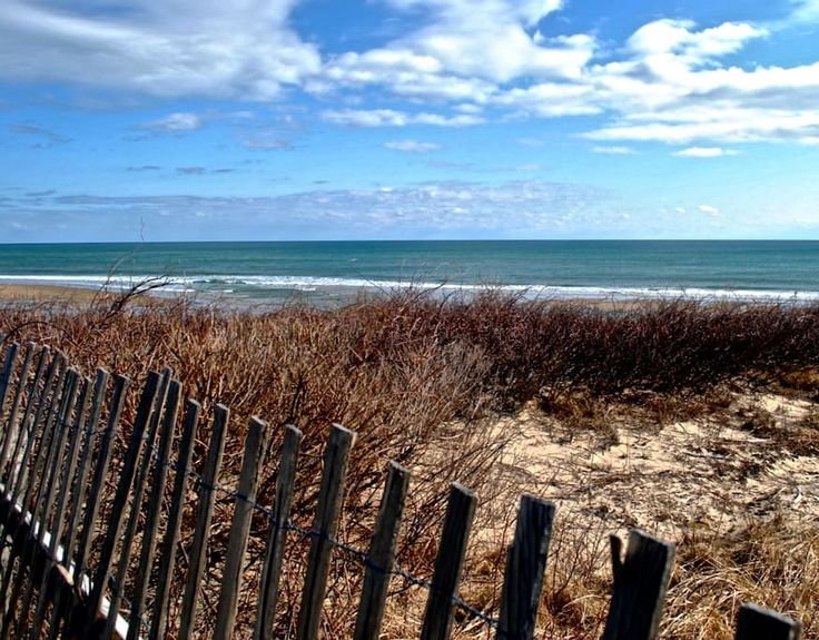 Private Cottage Walk to Beach - Houses for Rent in Eastham - Get $25 credit with Airbnb if you sign up with this link http://www.airbnb.com/c/groberts22