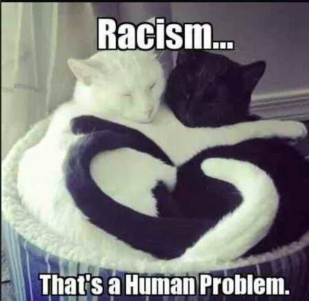 Racisim Is Human Nature