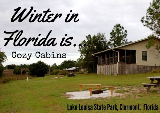 17 best images about winter in florida on pinterest for Florida state parks cabins