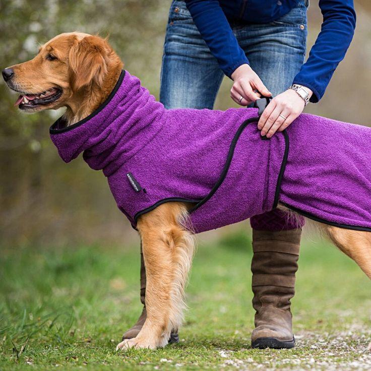 85 best Dog Stuff images on Pinterest | Haustiere, Hunde und Hund katze