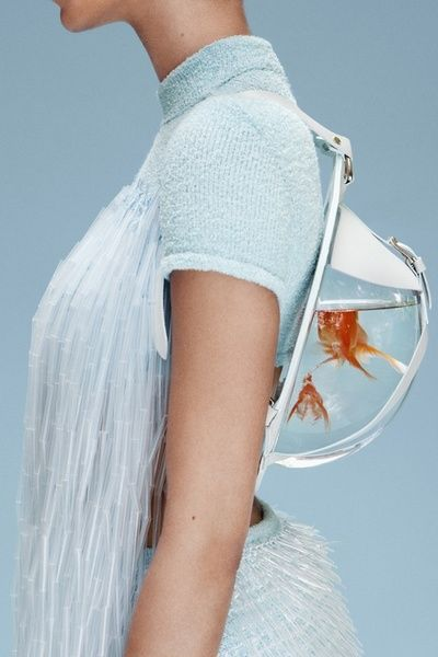 So cute but so mean for the fish! cassandra green central saint martins graduate…
