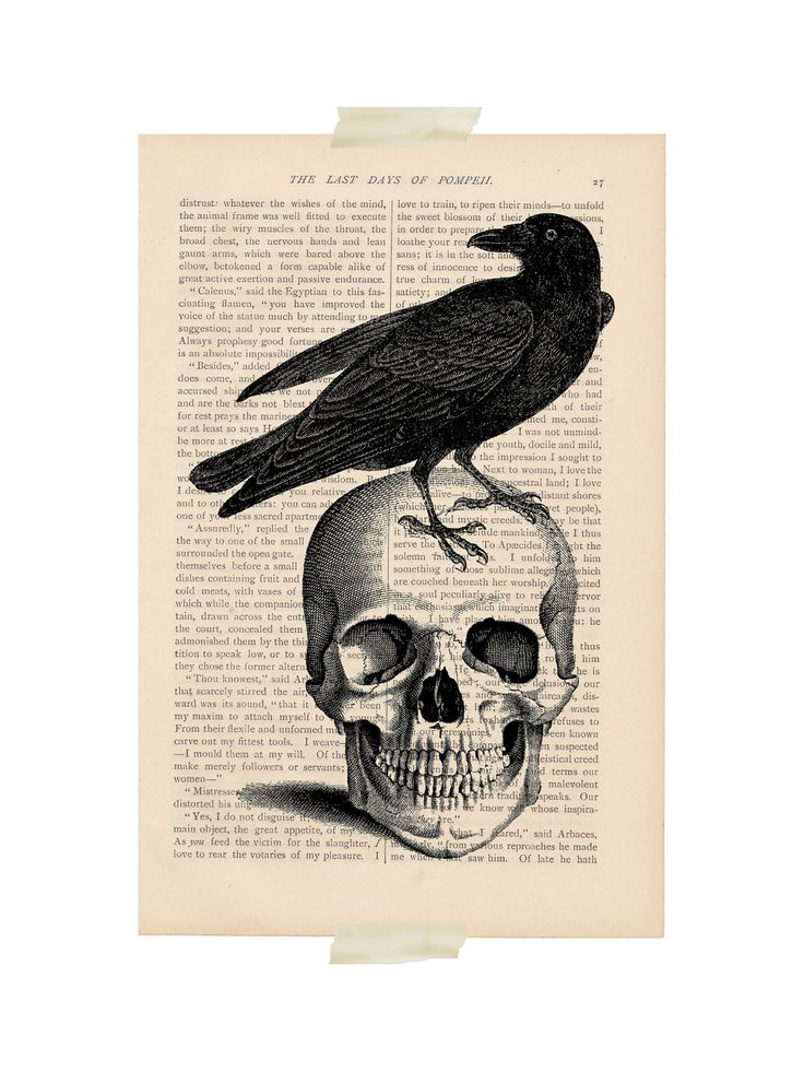 halloween decorations - Crow on Skull 2 - recycled ...
