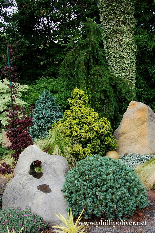 Colourful conifers.  Pinkham garden, Norfolk via Dirt Therapy