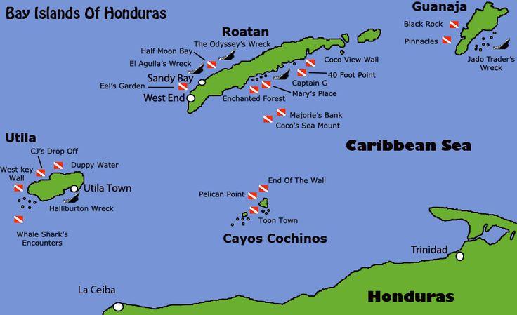 Whale sharks!   Diving Map of Honduras Bay Islands. Roatan, Utila, Guanaja and cayos ...
