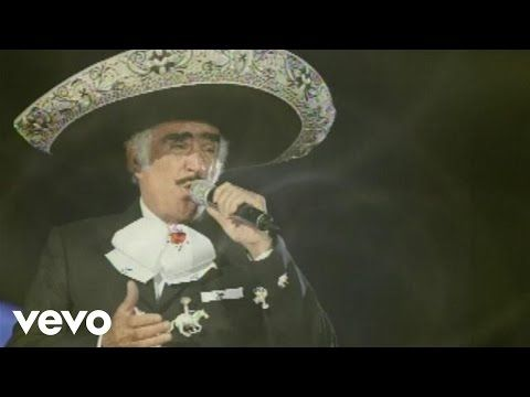 Vicente Fernández - Lastima Que Seas Ajena (Audio) - YouTube