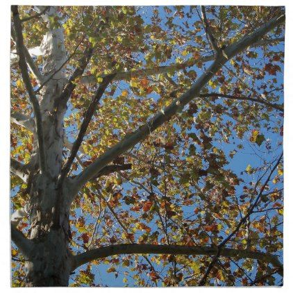 Sycamore tree in the fall against a blue sky napkin - fall decor diy customize special cyo