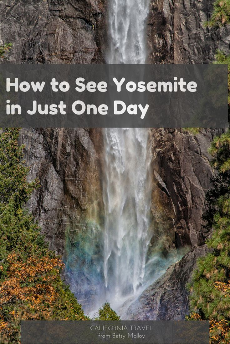 Yosemite National Park is far too big to see all of it in a day, but if it's all you have, these tips will help you make the best of it.
