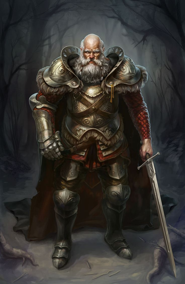 Old noble, warrior, right hand, ornate armor, knight, bold with long white beard, lord, commander, chief, earl, baron. RPG, D&D, DnD. Unknown artist =/