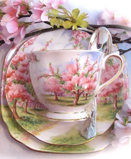 Faith, Hope and Cherry Tea: Royal Albert 'BLossom Time'
