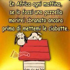 ogni mattina .... hahahaaaa