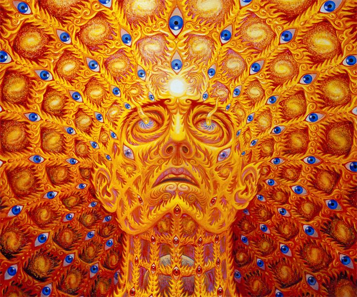 Psychedelic Spirit Paintings Alex Grey Art Gallery: 483 Best Psychedelic Art Images On Pinterest
