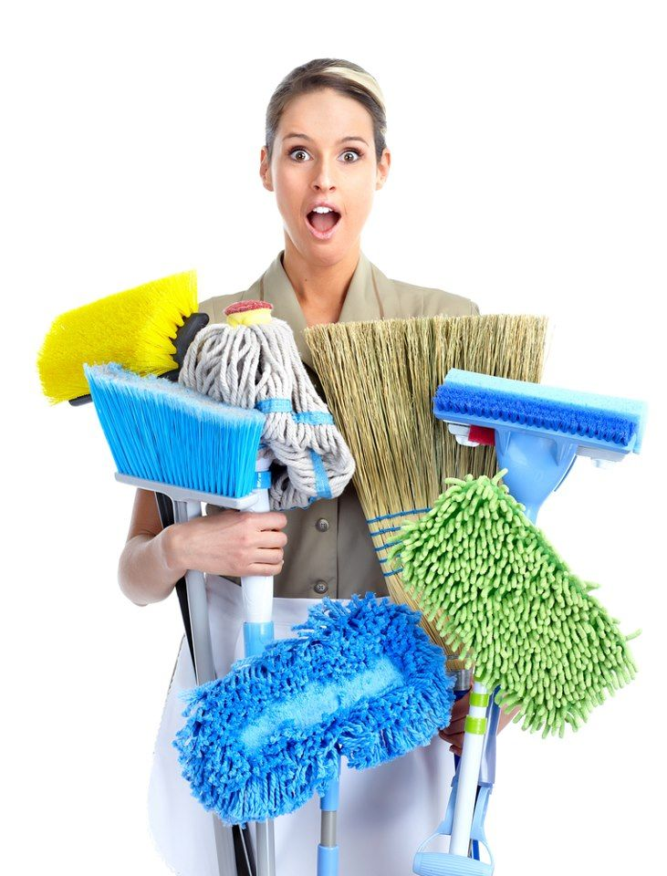 Did you know that the Norwex Mop System will replace all of these products?  Ask me how you can earn the mop system for FREE!