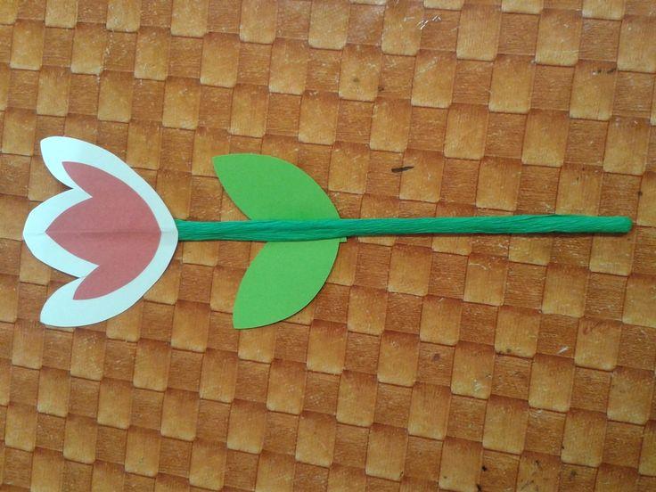 tulipán na špejlce
