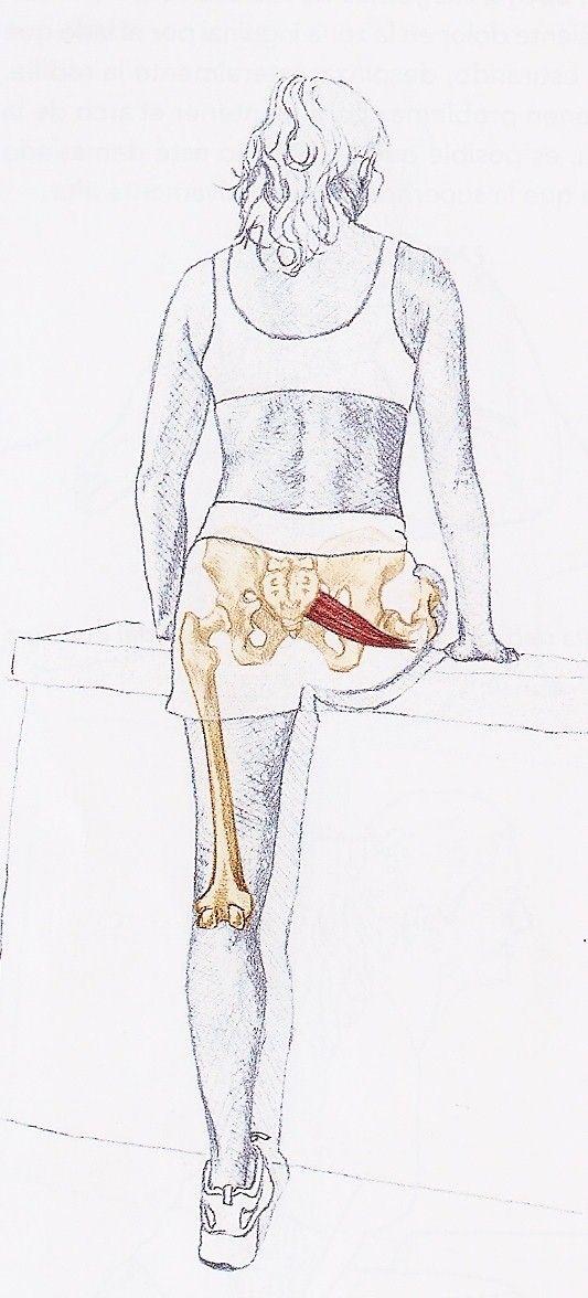 SINDROME DEL PIRAMIDAL. los síntomas no suelen bajar más allá de la rodilla, sin embargo, en la ciática normalmente llegan hasta el pie.