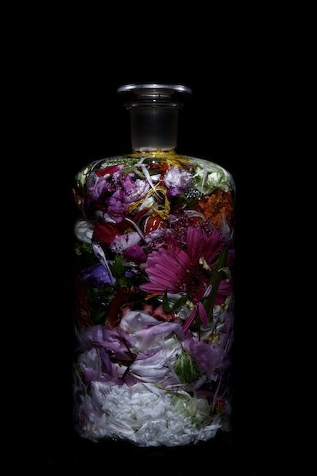 Bottle Flower series by Makoto Azuma - The sea has neither meaning nor pity.