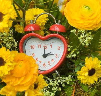 Spring forward, fall back ... on a safety checklist! Time Change Sunday household safety checklist for an organized home.
