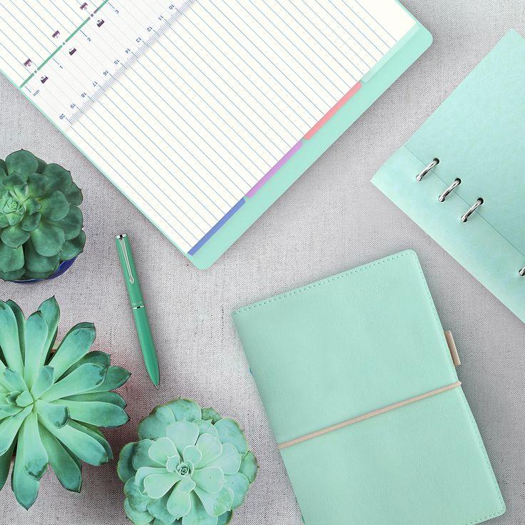 #filofax #notebook #clipbook #duckegg #green #nature #pastel #organiser #diary #journal #planner
