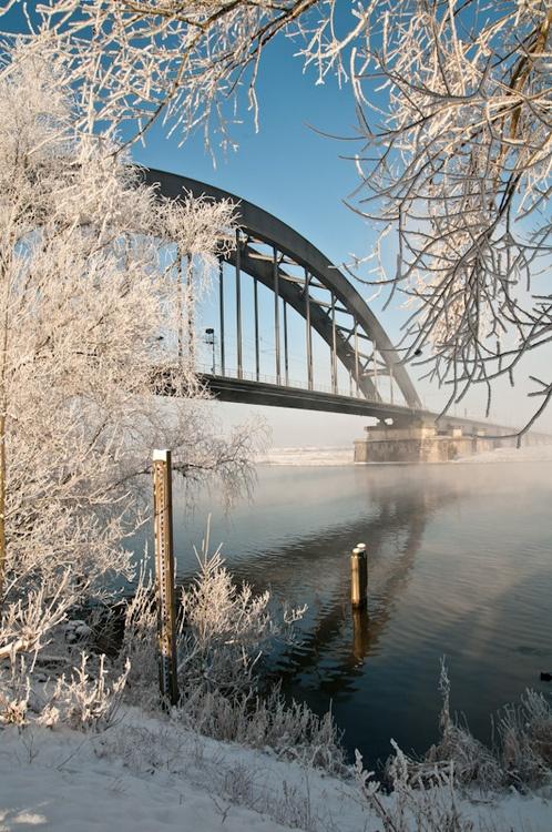 Culemborg,Nederland: Bridges Buildings, Netherlands Winter, The Netherlands, Bridges Worldwide, Dutch Winters ️ ️, Streets Bridges, Netherlands Dutch, Netherlands Netherlands