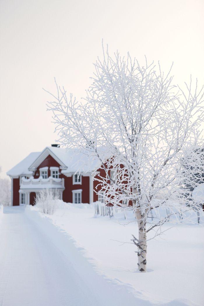 Finnish snow