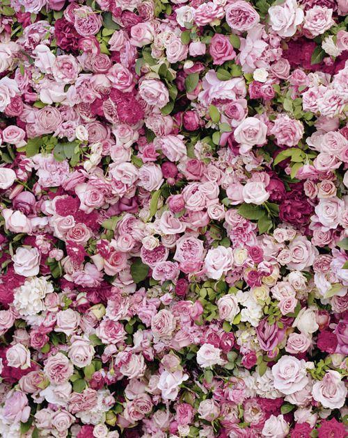 Miss Dior - 'La vie en rose'  breathe!