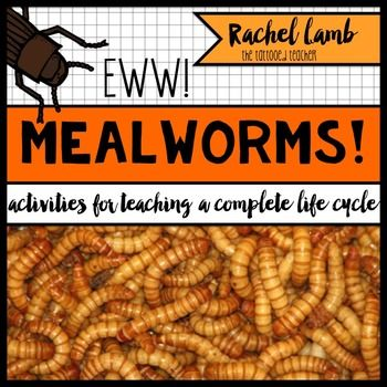 111 best images about worm unit on pinterest worm farm kindergarten and first grade science. Black Bedroom Furniture Sets. Home Design Ideas