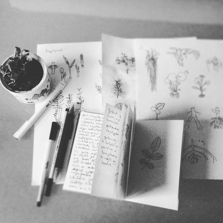 Work in progress 🔬🌿#workinprogress💪 #sketch✏ #sketchbook #plant #flower #studio #atelier #hungarianartist