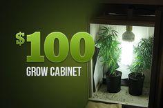 Marijuana Growers HQ – The $100 Grow Cabinet http://www.marijuanagrowershq.com/the-100-grow-cabinet/