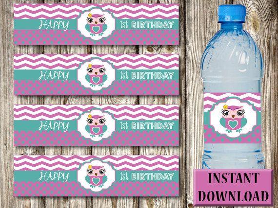 Water Bottle Labels 1st Birthday Dark Pink Owl Girl PDF