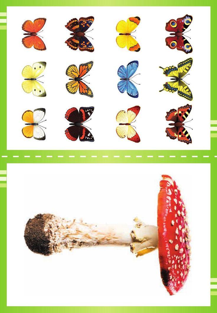 Alfabet w obrazkach do druku 16