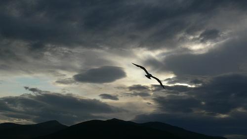 Oban | Scotland by albert claret, via Flickr
