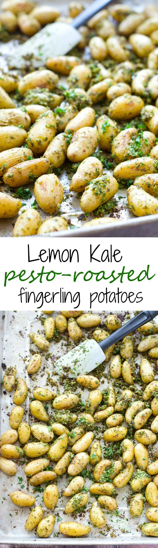 You won't believe how much flavor is packed into these pesto-roasted fingerling potatoes! They make an easy and delicious side dish for any spring dinner. @WholeHeavenly