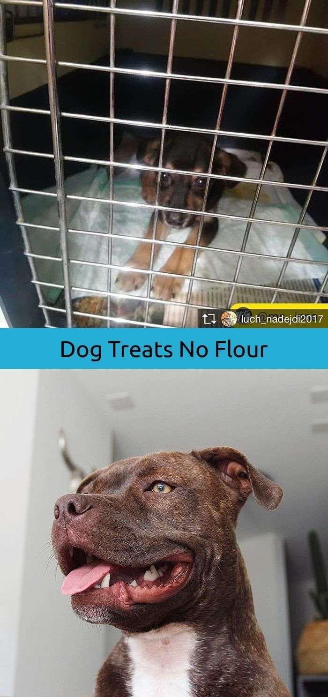 Dog Tattoo Golden Retriever Training Dogs To Get Along Pinterest