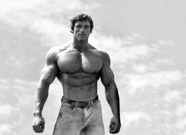 """LE 3 REGOLE FONDAMENTALI SECONDO ARNOLD: 1) """"Il primo passo è quello di credere realmente che diventare grandi e massicci sia possibile. Dovete accettare l'idea che anche a voi spetta il privilegio di diventare enormi. Allo stesso modo potete ordinare ai muscoli di sollevare pesi elevati anche se tutto sembra suggerirvi che ciò sia impossibile"""".  2) """"Il passo successivo consiste nell'allenarvi sodo concentrandovi sui movimenti di base da eseguire con bilanciere e manubri anziché con le…"""