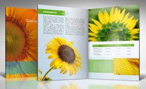 Картинки по запросу дизайн каталога продукции примеры