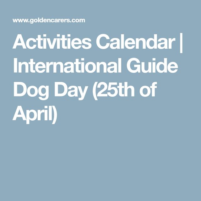 Activities Calendar | International Guide Dog Day (25th of April)