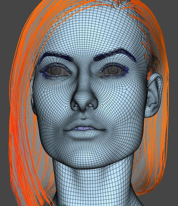 26 Best Topology Images On Pinterest Face Face Anatomy And Faces