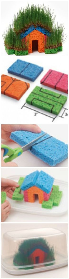 Ein Haus aus Schwamm und komplett mit Gras überzogen. Witziges Projekt für kleine Kinder :: DIY Fun With Grass Seeds And Sponges