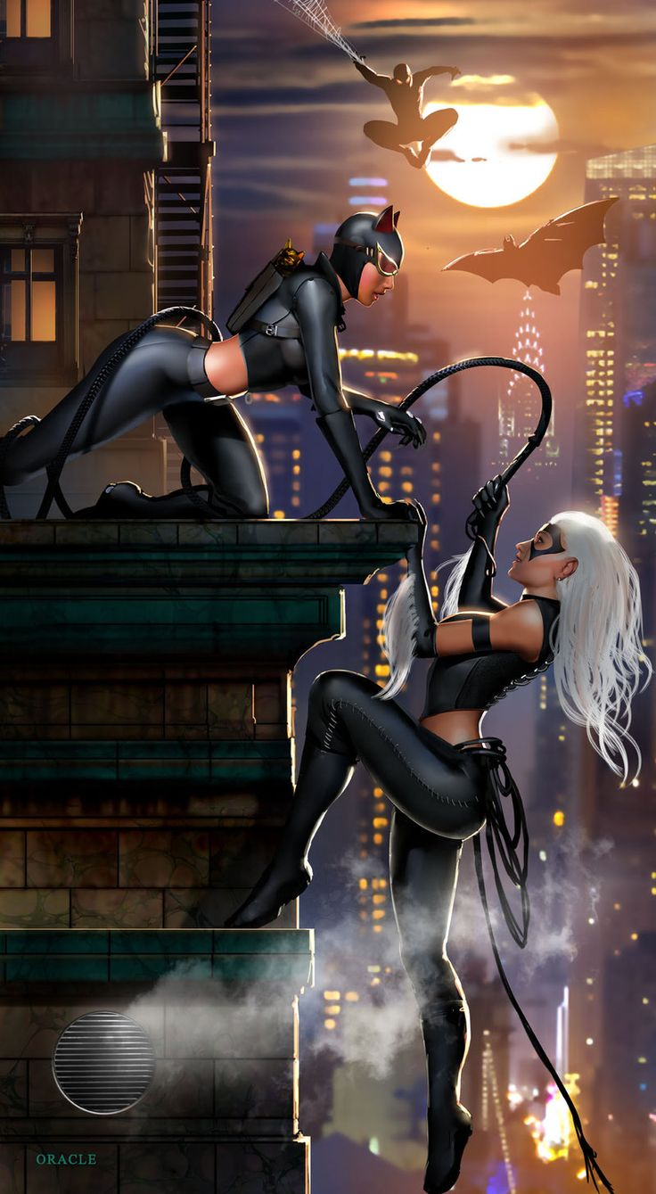 Catwoman vs Black Cat by Mystic Oracle *