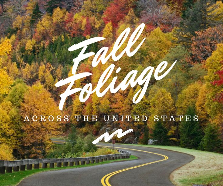 Fall Foliage Across the United   States |  http://bonvoyagebitches.com