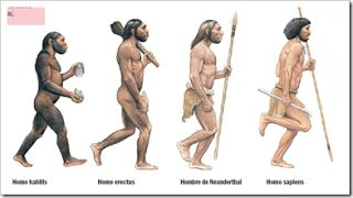 La hominización es el proceso de evolución o transformaciones del ser humano desde sus ancestros más antiguos. Empezó hace unos 6,5 millones de años. Se produjeron cambios anatómicos, psíquicos y culturales.