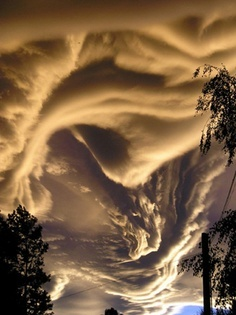 "stormy weather...saw these in Pa. 2 years ago...called ""rope Clouds"" which come right before the hail and horrendous storm."