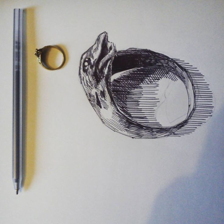 A2 ART/ILLUSTRATION - memorabilia  pen drawing of a ring from photograph