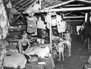In the POW camps