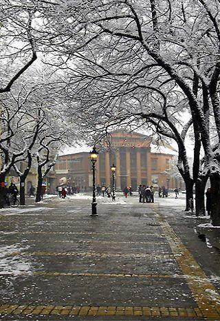 Subotica in winter, Vojvodina, Serbia