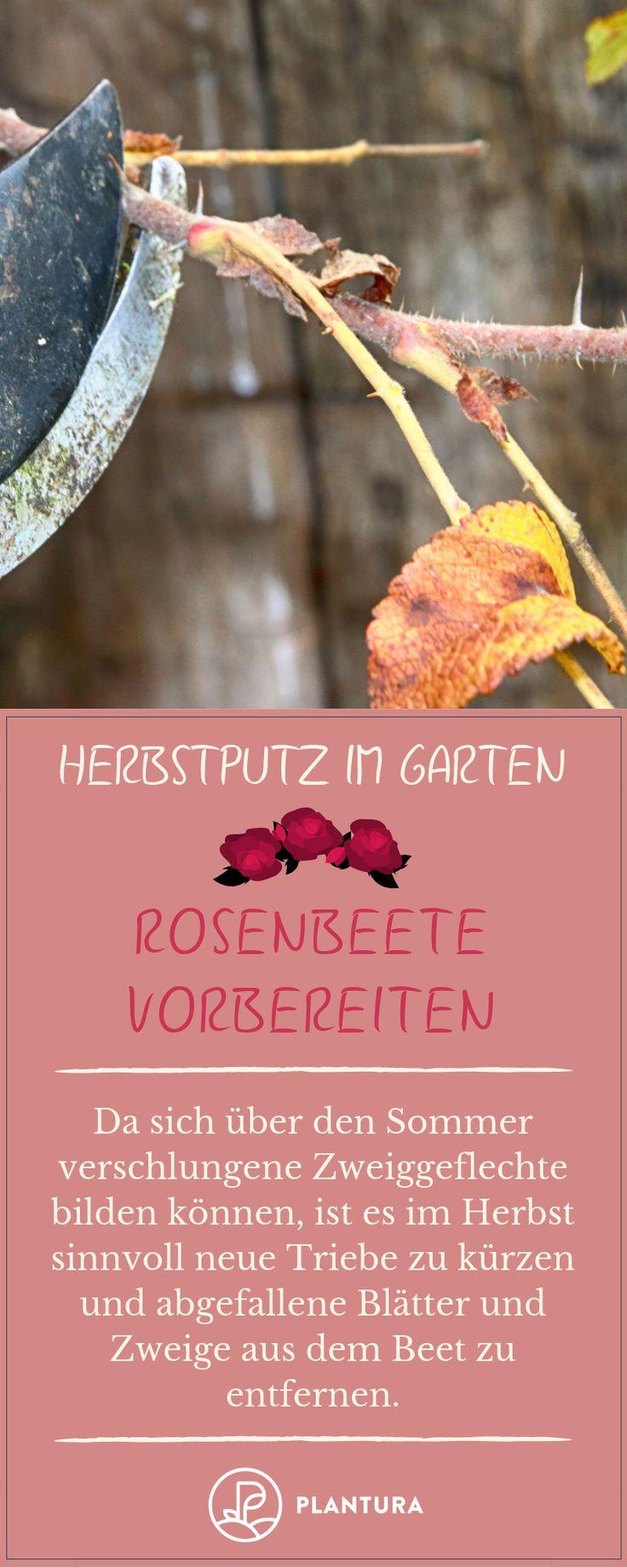 Herbstputz im Garten: Unsere Top 10 Tipps Fru00fc…