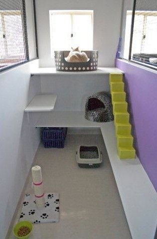 this would be the perfect cat haven for kairi it needs more toys though this is perfect a place for the kittylitter and for them to have their own space - Cat Room Design Ideas