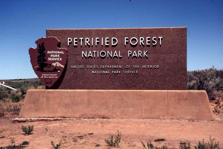 Where Is It: The Park is 109 miles east of Flagstaff, AZ, just off I-40. It Happened Here: From NationalGeographic.com: Much of the quartz that replaced the wood tissue 200 million years ago is tin...